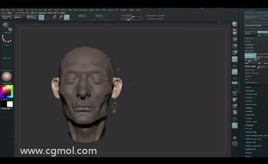 ZBrush如何在头盖骨上直接雕刻看得见的肌肉(下)